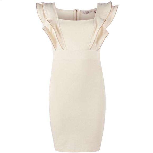 Ted Baker Zipper Dress